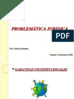 Garantias Constitucionales 2020