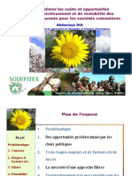 presentation A. DIA.pdf