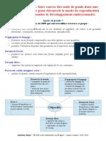 projet_couvaison_oeufs_de_poule