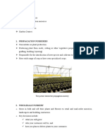 Types of oil palm nurseries