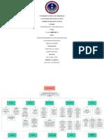 Organizador Gráfico de Neurotransmisores y Sistema Endócrino