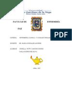PAEhospi militarG2018 (1).docx