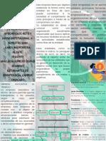 PROFUNDIZACIÓN DEL FOLLETO DIDACTICO.pdf