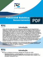 PGEE5558 Conjunto 4 - Sensoriamento.pptx