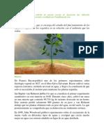 Historia de la Fisiología Vegetal..pdf
