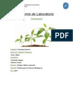 Laboratorio 14