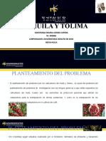 DIAPOSITIVAS DE SUSTENTACION DE PRACTICAS