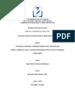 INVESTIGACIÓN DEL COMPORTAMIENTO DE CONSUMO DE