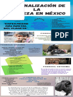 Infog. REGIONALIZACIÓN DE LA POBREZA EN MÉXICO