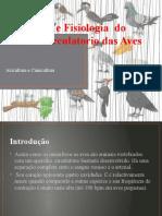 Anatomia e Fisiologia  do sistema circulatorio das Aves