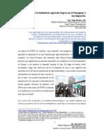 Desarrollo de la Industria Agrícola Sojera y sus impactos
