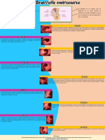 Infografia del desarollo embrionario (1).pdf