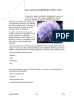 Desafios_MelissaRiquelme.docx