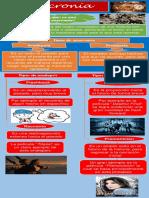 Infografia Anacronías