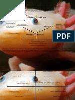 semiotización del cuento axolotl