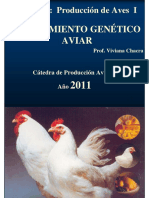 Mejoramiento genético aviar