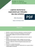 Estudo-Infeccoes_bacterianas_Infeccoes_urinarias-1