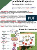 Aula 5 Tecido Epitelial e Conjuntivo 2017 EB.pdf