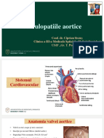 Valvulopatii_aortice
