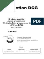 Collection DCG. Droit des sociétés Corroy  UE 2 du DCG 2019