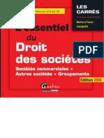L'essentiel du droit des sociétés 2016 ( PDFDrive ).pdf