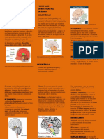 ACTIVIDAD 5 QUE TENGO EN MI CABEZA (1) 2 PDF.pdf