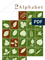 Week 5 Tree Alphabet Cabrera