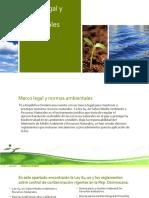 Marco legal y normas ambientales