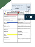17. HR PEGAMENTO MAYOLICAS-CHEMAYOLIC