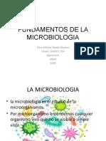 microbiologia fase-1