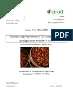 RAFLES DE PALMIER.pdf