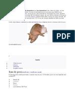 Porcul domestic