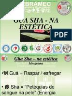 simposio-xvi-gua-sha-estetica-1
