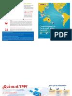 DipticoTPP_ConsolidandoPE_AsiaPacifico (1).docx