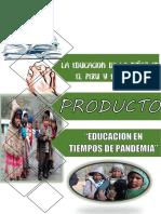 EDUCACION EN TIEMPOS DE PANDEMIA