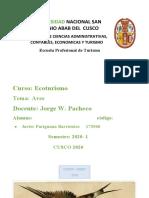 AVES DESCRIPCION.docx