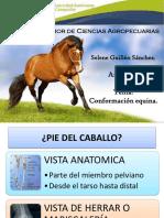 BIOMECANICA_Y_BIODINAMICA_1