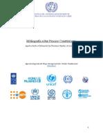 Bibliografía_sobre_proceso_constituyente_ONU