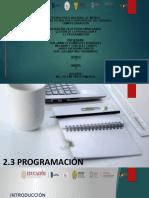 2.3 PROGRAMACIÓN Gestión de la Producción II