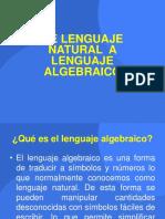 Lenguaje naturala algebraico