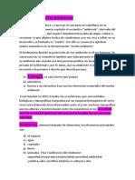 Resumen Derecho Ambiental Valls