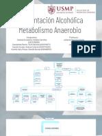 FERMENTACIÓN ALCOHÓLICA METABOLISMO ANAEROBIO