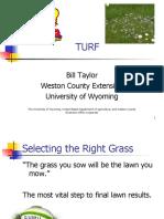 turf-1270141342-phpapp01