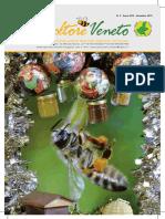 Apicoltore veneto 3-2019.pdf