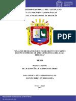 Mamani_Flores_Julio_Cesar.pdf
