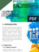 2da investigación grupal-presentación