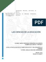 Peregrina_Cuadrodedisciplinas.pdf
