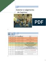 racas-exterior-e-julgamento-caprinos-2020.pptx.pdf