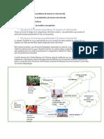 metodología de Checkland _Yamileth_Perdomo (1).docx