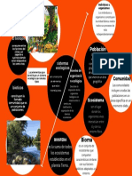 Orange Shapes Simple Website Creation Mind Map.pdf